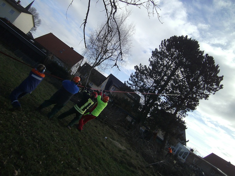 Baumfällen02022013C